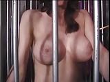 Loni bunny porno video