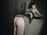 Surinaamse webcam